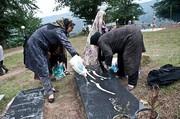 تصاویر | عید مردگان در مازندران