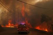 تصاویر | آتشسوزی در پرتغال ۱۸۰۰ آتشنشان را بسیج کرد