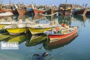 تصاویر | هزاران صیاد بوشهری آماده برای صید میگو