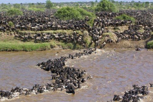 رود مارا کنیا