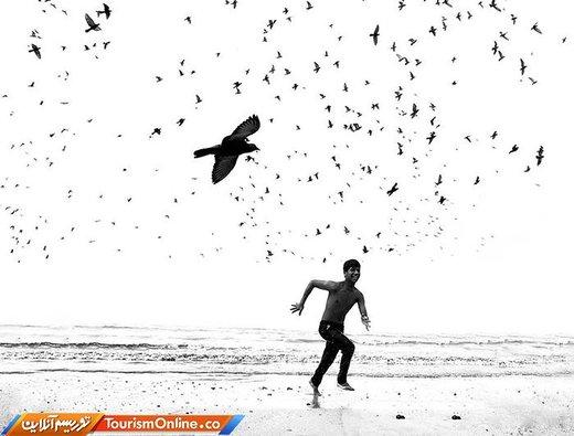 عکس برنده مسابقه آیفون گرافی یا عکاسی با آیفون