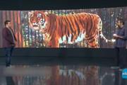 فیلم | تبلیغ برند پوشاک خارجی روی آنتن شبکه ۳!