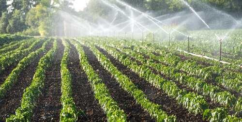 احداث شهرک کشاورزی در اراضی ملی استان البرز