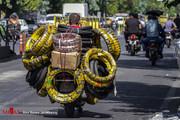 تصاویر | بار زندگی روی دوش موتور!