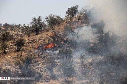افزایش ۶۰ درصدی آتشسوزی در مراتع و جنگلهای آذربایجانغربی