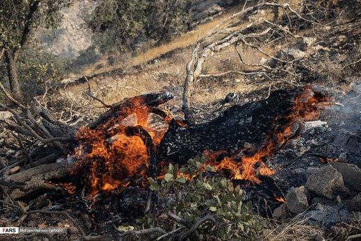 مهار آتش سوزی در کوهمرهسرخی شیراز