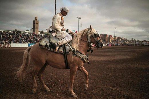 جشنواره اسب سواری در مراکش