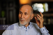 بهزاد نبوی: همه مشکلات کشور تقصیر دولت نیست