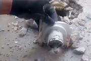 فیلم | نجات گربهای در خرمآباد که سرش در راهآب چاه گیر کرده بود