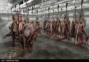 چرا گوشت گوساله با ۳ برابر قیمت واقعی به دست مردم میرسد؟
