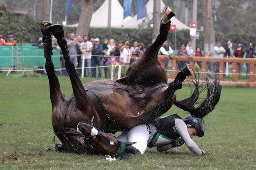 سوارکار برزیلی، در بازیهای پانامریکن در شهر لیما پرو، پس از پرش از روی مانع  از روی اسب بر زمین افتاد
