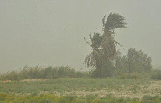 توفان در زابل به ۱۱۵ کیلومتر بر ساعت رسید