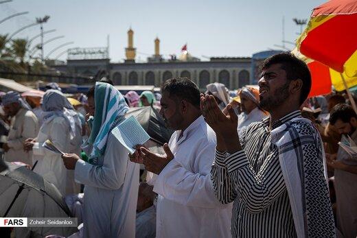 دعای عرفه در کربلای معلی
