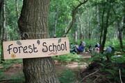 مدارس طبیعت در جهان چه کار میکنند؟