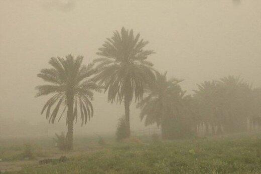 توفان در سیستان و بلوچستان؛ ۲۶۴ نفر مصدوم شدند