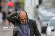 هوای پاییزی مهمان ایران است؛ جدول پیشبینی آب و هوای همه استانها