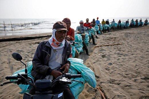 کارگران حامل کیسههای شنی آلوده به مواد نفتی در کاراونگ اندونزی منتظر هستند تا کیسهها با کامیون انتقال یابد