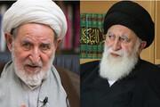 فیلم | واکنش آیت الله علوی بروجردی به انتقاد آیت الله محمد یزدی؟