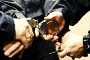 آبروریزی دیگری درباره مهماندوستی ایرانیها: زن و شوهر دزد، اموال گردشگر ایرلندی را غارت کردند