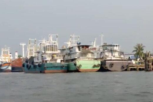 فیلم | غذای دریایی چطور صیادان را برده کرده است؟