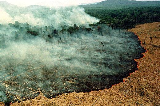 فیلم | سیاه شدن آسمان سائوپائولو به دلیل آتش سوزی جنگل های آمازون