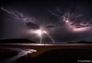 تصاویری دیدنی از برندگان مسابقه عکاسی طبیعت ۲۰۱۹ استرالیا