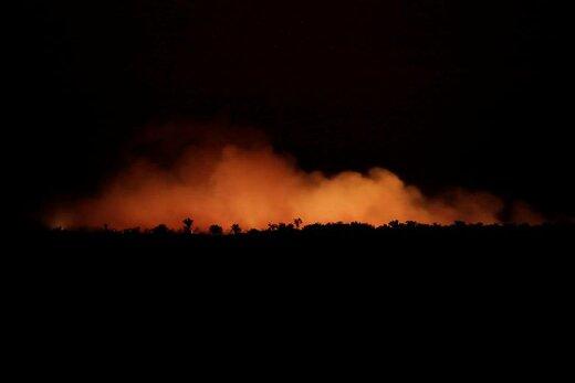بلند شدن دود ناشی از آتشسوزی در منطقه ای از جنگلهای بارانی آمازون واقع در ایالت آمازوناس برزیل