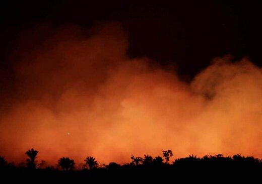 فیلم | چه کسی آمازون را آتش زده است؟