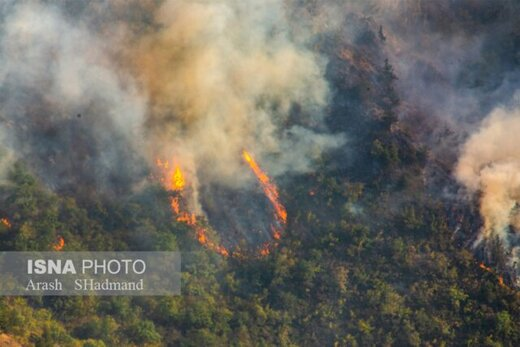 همه ۶۴۰ هکتار اراضی آتشگرفته ارسباران جنگلی نیست
