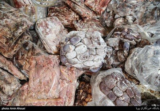 ۲۵۰ کیلو گوشت فاسد از داخل یک پراید کشف شد