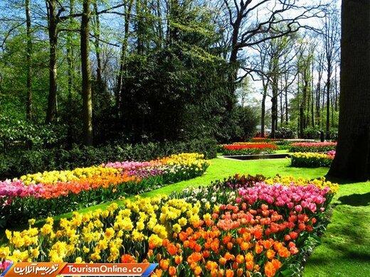 باغ لاله –هلند-