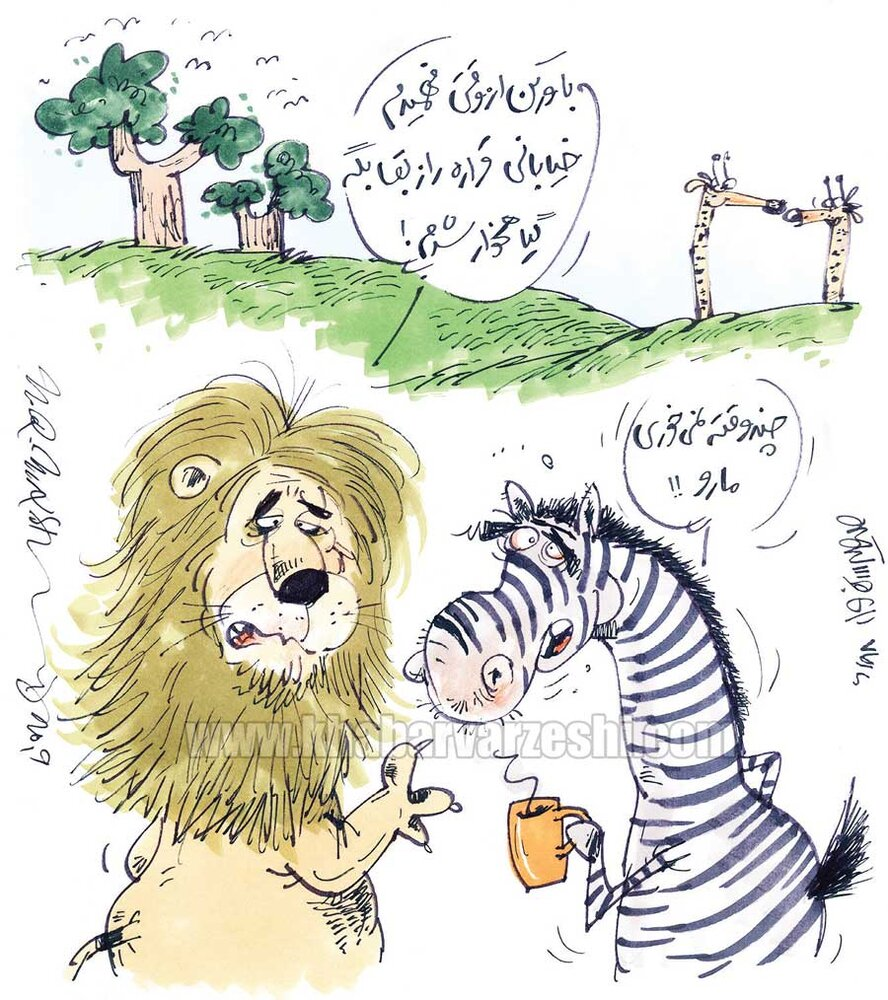 آقای گزارشگر اشتهای شیر جنگل را هم کور کرد!
