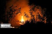 تصاویر | وقتی آتش به جان تالاب انزلی افتاد