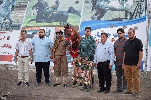 اولین جشنواره زیبایی اسب در کرمانشاه