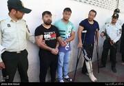 جزئیات دستگیری سرکردگان اصلی باند ۵۰۰ نفره تصادفات ساختگی
