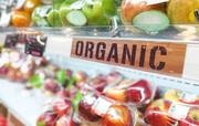 محصول ارگانیک واقعی چگونه را بشناسیم؟