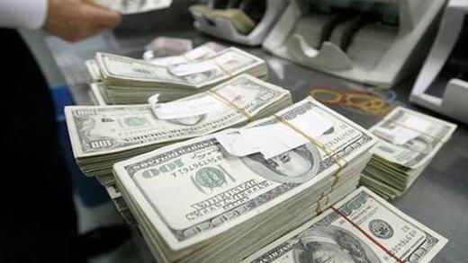 پیشبینی یک فعال اقتصادی از آینده نرخ دلار