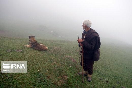 طبیعت ییلاق «سوچاله» در ماسال گیلان