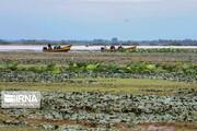 تصاویر | تالاب انزلی خشک میشود!