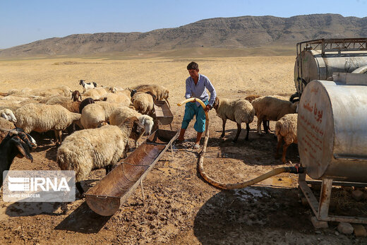 آبرسانی به عشایر منطقه قره میدان