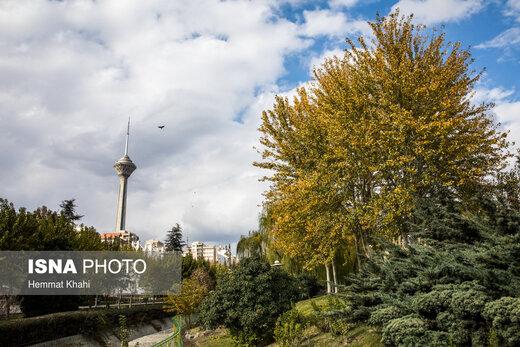 برج میلاد در روزهای عاشورا و تاسوعای حسینی(ع) تعطیل است