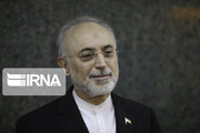 Advances in nuclear energy make Iran powerful: AEOI chief