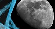 ارسال DNA به ماه با ۹۹ دلار!