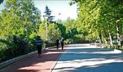 شهرداری شهرکرد احداث جاده سلامت را تسریع کند