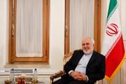 تصاویر   دیدار ظریف و قائم مقام وزیر خارجه هند
