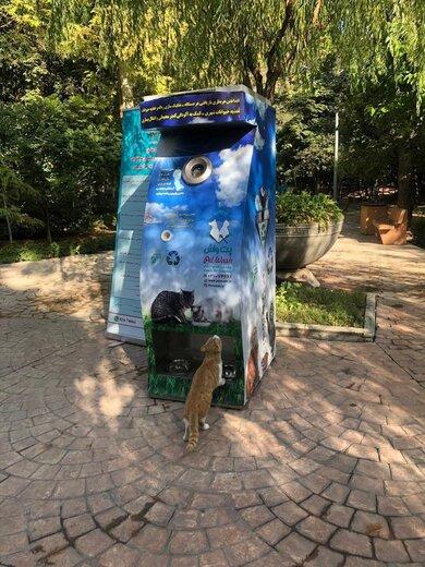 ابتکار شهرداری برای حمایت از حیوانات شهری