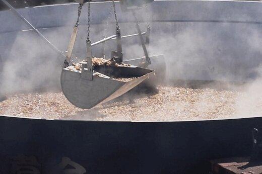 فیلم | استقبال از پائیز در ژاپن؛ پخت «ایمونی» در دیگی به قطر ۶.۵ متر