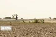 هشدار فائو نسبت به وقوع بحران غذا