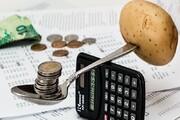 کاهش پسانداز خانوارها تا سطح سال ۹۵ / کسر بودجه به خانوارهای روستایی رسید