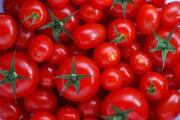 تاثیر منفی آهن بر خاصیت ضدسرطانی گوجه فرنگی